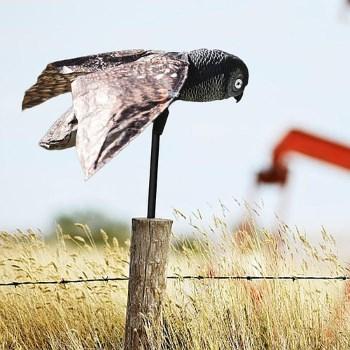 отпугиватель птиц